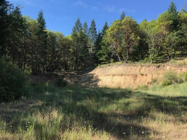 951 Sykes Creek, Rogue River, OR 97537 (#2992353) :: Rocket Home Finder
