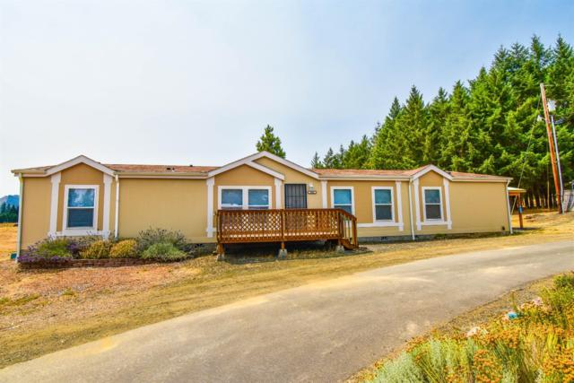 2882 Tenmile Valley Road, Winston, OR 97481 (#2992730) :: Rocket Home Finder