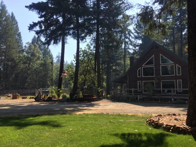 121 Pine Cone Drive, Cave Junction, OR 97523 (#2993075) :: Rocket Home Finder
