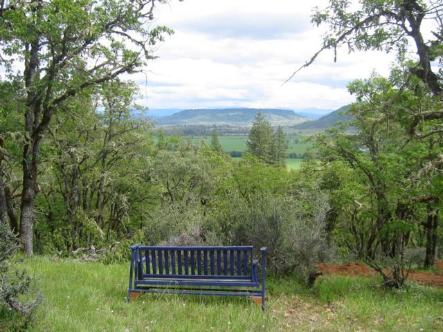 522 Sams Creek, Gold Hill, OR 97525 (#2994149) :: Rocket Home Finder