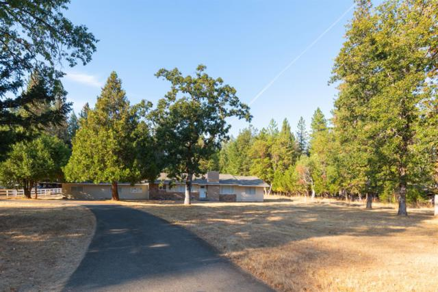 1168 Queens Branch Road, Rogue River, OR 97537 (#2994208) :: Rutledge Property Group