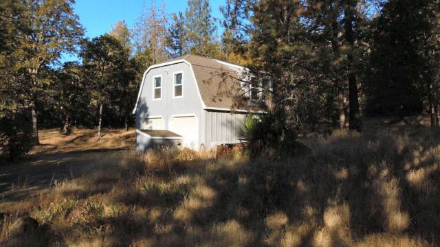 164 Busch Road, Trail, OR 97541 (#2994373) :: FORD REAL ESTATE