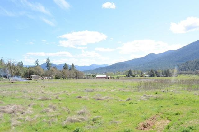 233 China Gulch Road, Jacksonville, OR 97530 (#2994442) :: Rocket Home Finder