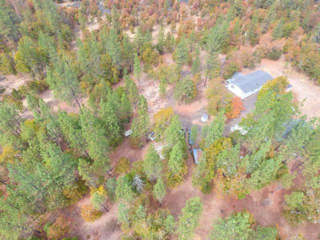 149 Lewis Creek Road, Trail, OR 97541 (#2994900) :: FORD REAL ESTATE