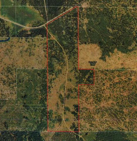 22330 Dead Indian Memorial, Ashland, OR 97520 (#2995297) :: Rutledge Property Group