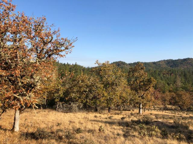 540-TL 300 Bolt Mountain, Grants Pass, OR 97527 (#2996037) :: Rocket Home Finder