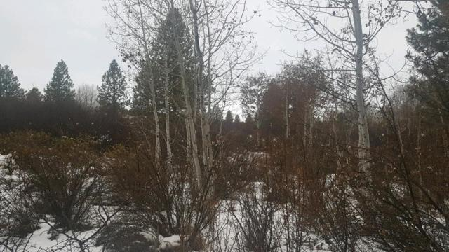 0 Shore View, Chiloquin, OR 97624 (#2996484) :: FORD REAL ESTATE