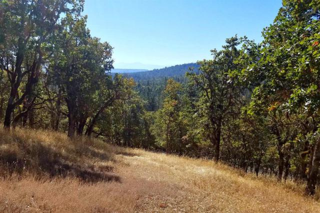 15505 Meadows, White City, OR 97503 (#2996651) :: Rutledge Property Group