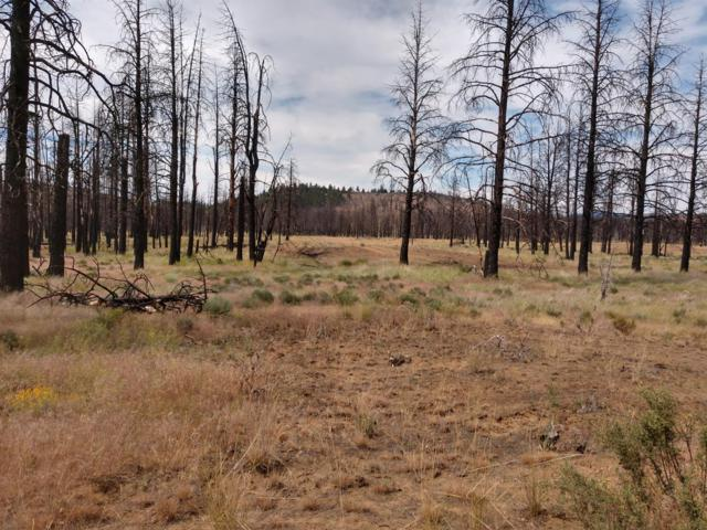 4500 Mountain Quail, Sprague River, OR 97639 (#2999316) :: FORD REAL ESTATE