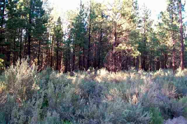 8-Lot Gray Wolf, Sprague River, OR 97639 (#2999908) :: FORD REAL ESTATE