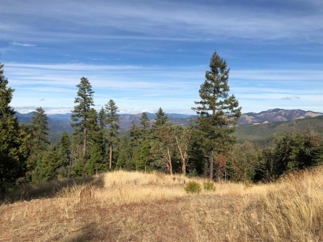 5300 Yale Creek, Jacksonville, OR 97530 (#3000026) :: FORD REAL ESTATE