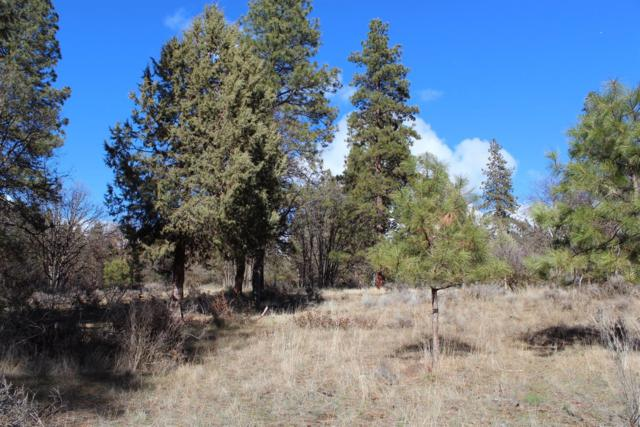 0-Lot 108 Merganser, Klamath Falls, OR 97601 (#3000652) :: FORD REAL ESTATE