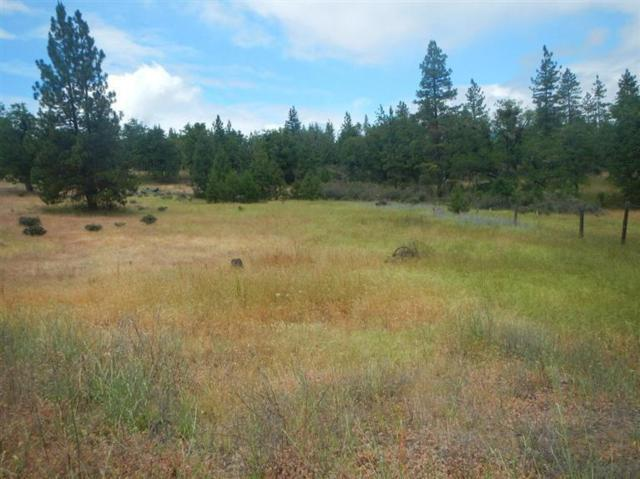 1469 Madera, Trail, OR 97541 (#3001514) :: FORD REAL ESTATE