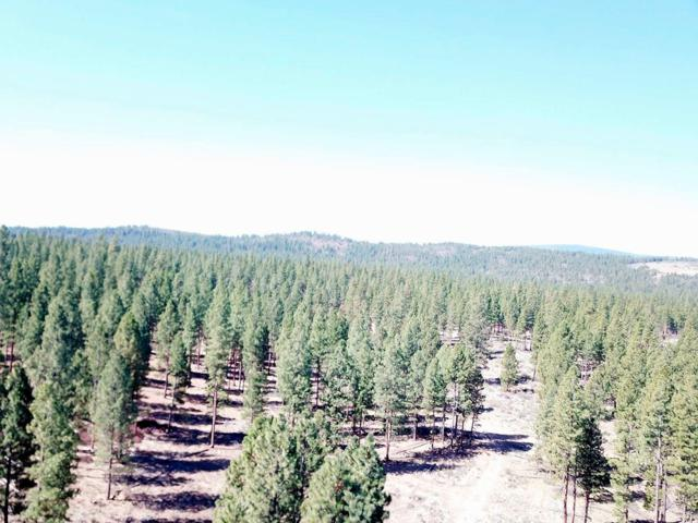 150-Acres Skeen Ranch Rd - Off, Sprague River, OR 97639 (#3001985) :: FORD REAL ESTATE