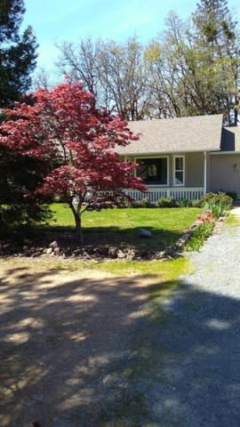 1684 Pleasant Valley Road, Merlin, OR 97532 (#3003133) :: FORD REAL ESTATE