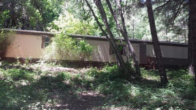 520 Ingalls Lane, Wilderville, OR 97543 (#3003177) :: FORD REAL ESTATE