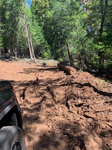 501 Elder Mill, Trail, OR 97541 (#3003975) :: Rutledge Property Group