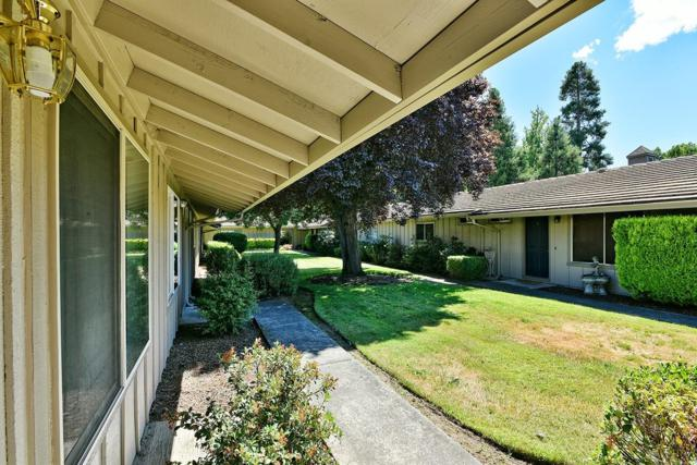 300 Shafer Lane B1, Jacksonville, OR 97530 (#3004420) :: Rutledge Property Group