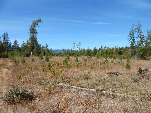 5680 Takilma, Cave Junction, OR 97523 (#3006650) :: FORD REAL ESTATE