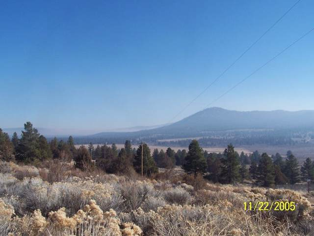 0-lot 8 Valley View, Beatty, OR 97621 (#3007517) :: FORD REAL ESTATE