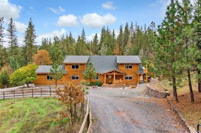 763 Forest Hills Drive, Rogue River, OR 97537 (#3007676) :: Rutledge Property Group
