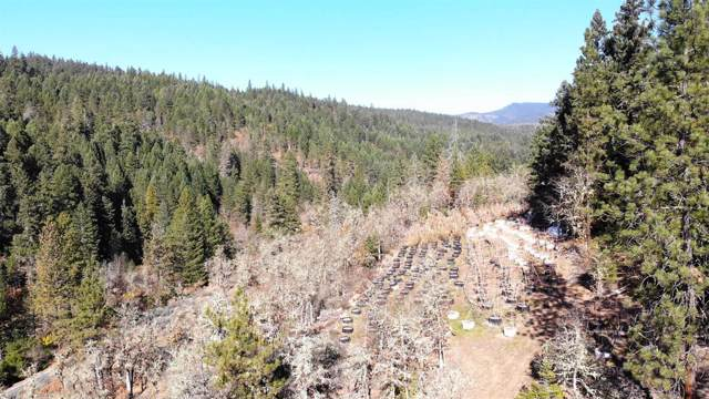 0 Tl 201 Highway 227, Trail, OR 97541 (#3007931) :: Rutledge Property Group