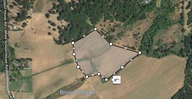 1701 White Schoolhouse, Cave Junction, OR 97523 (#3008805) :: FORD REAL ESTATE