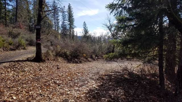 12657 Mc Neil Creek Road, Trail, OR 97541 (#3009712) :: FORD REAL ESTATE