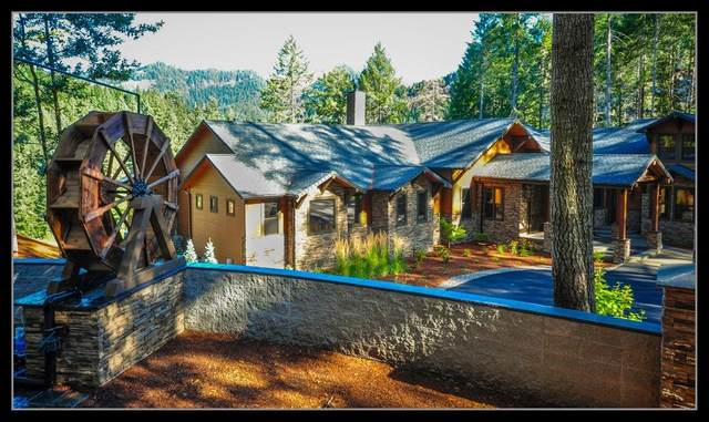 6569 Tyee Road, Oakland, OR 97486 (#3010396) :: FORD REAL ESTATE