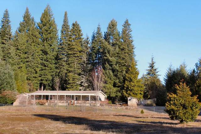12 First Street, Prospect, OR 97536 (#3010568) :: FORD REAL ESTATE