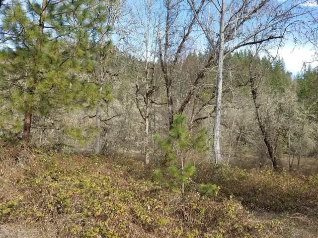 600-TL Elk Creek, Trail, OR 97541 (#3010797) :: FORD REAL ESTATE