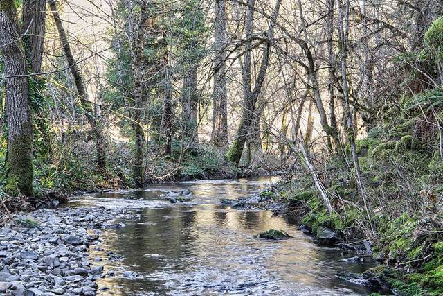 0 Waters Creek, Wilderville, OR 97543 (#3010957) :: FORD REAL ESTATE