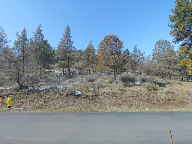0-Lot 1183 Murrelet, Klamath Falls, OR 97601 (#3011918) :: FORD REAL ESTATE