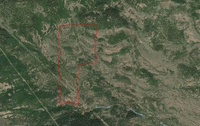 0 Soda Mountain, Ashland, OR 97520 (#3011975) :: FORD REAL ESTATE