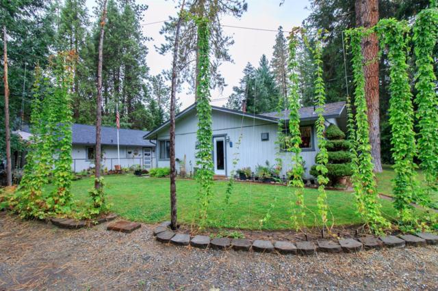 8057 E Evans Creek Road, Rogue River, OR 97537 (#2982064) :: Rocket Home Finder