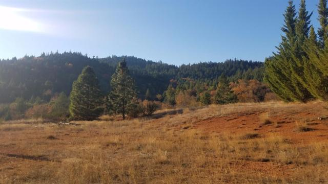 1011 Ingalls, Wilderville, OR 97543 (#2983408) :: FORD REAL ESTATE