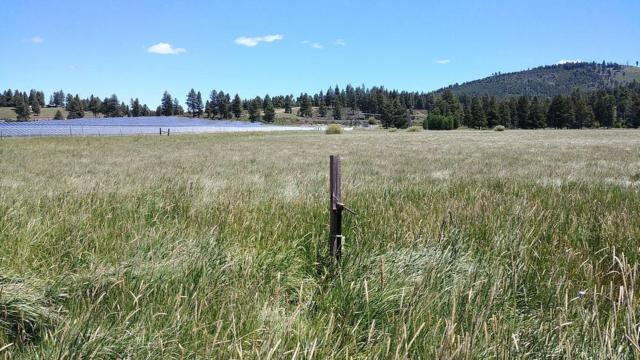 20-Lot Cattle, Chiloquin, OR 97624 (#2987861) :: Rocket Home Finder
