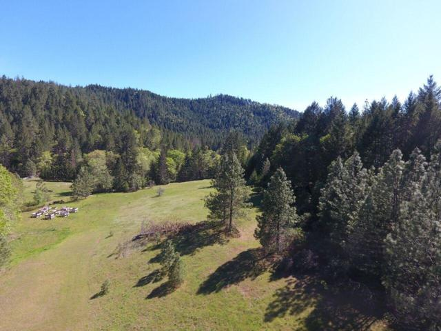 185 South Shore, Selma, OR 97538 (#2989482) :: Rocket Home Finder