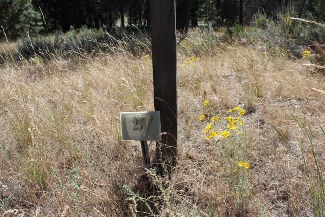 1132 Paper Birch, Klamath Falls, OR 97601 (#2991630) :: FORD REAL ESTATE