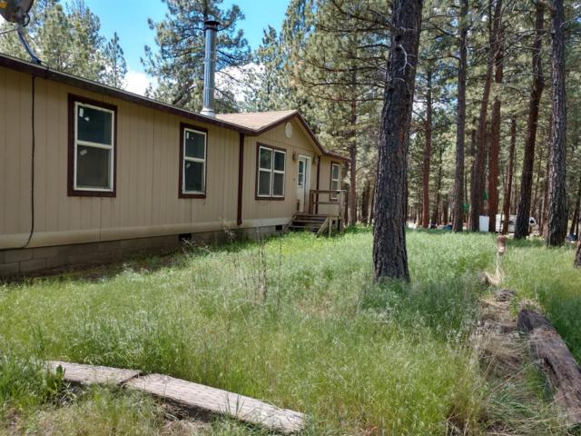 21964 Peacepipe Lane, Chiloquin, OR 97624 (#2991919) :: Rocket Home Finder