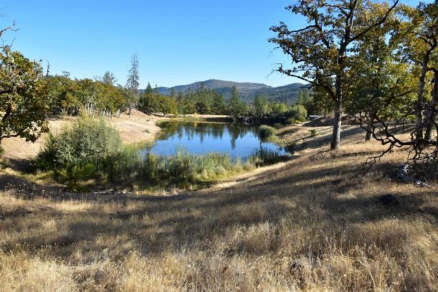 20618 Sawyer Rd., Shady Cove, OR 97539 (#2994569) :: Rutledge Property Group