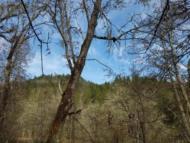 0 Elk Creek, Trail, OR 97541 (#2999387) :: FORD REAL ESTATE
