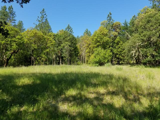 0 Kane Creek, Central Point, OR 97502 (#3002284) :: FORD REAL ESTATE