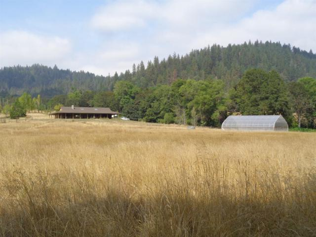 5636 Thompson Creek Road, Applegate, OR 97530 (#2981656) :: FORD REAL ESTATE