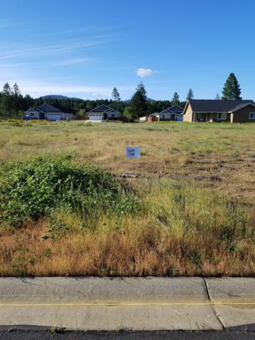 256 Pomeroy View, Cave Junction, OR 97523 (#2988126) :: FORD REAL ESTATE