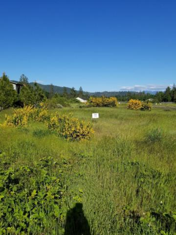 263 Retirement, Cave Junction, OR 97523 (#2988182) :: FORD REAL ESTATE