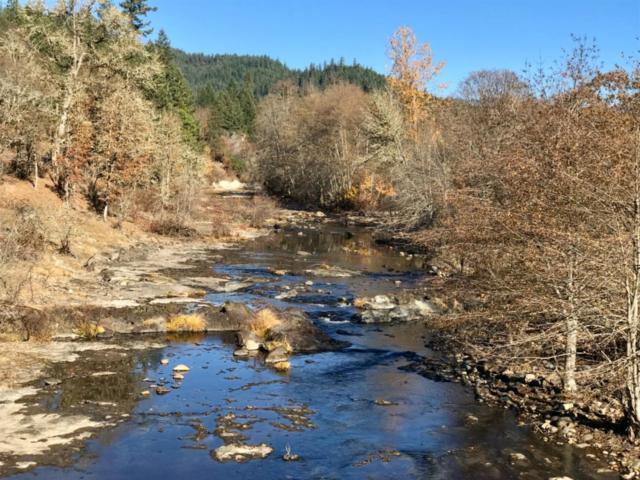 0 Elk Creek, Trail, OR 97541 (#2996311) :: FORD REAL ESTATE