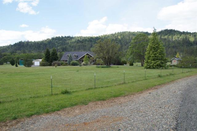 120 Tycer Crossing, Cave Junction, OR 97523 (#2978441) :: FORD REAL ESTATE