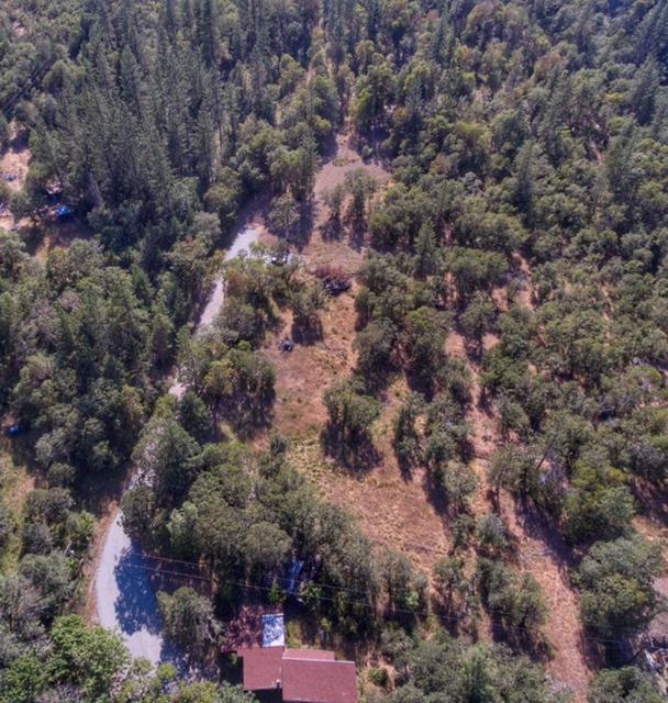 3599 Kane Creek, Central Point, OR 97502 (#2979016) :: Rocket Home Finder