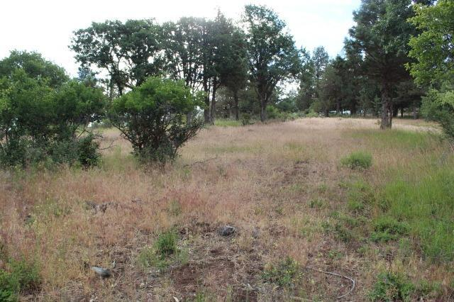 0-LOT 942 Willet Way, Klamath Falls, OR 97601 (#2985103) :: Rocket Home Finder